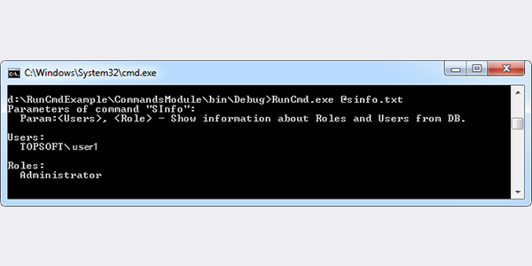 An Example of Using Command Line Utility RunCmd
