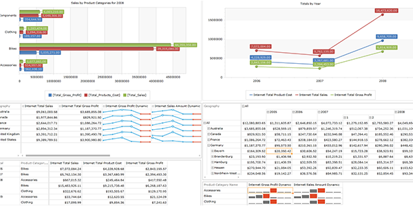 In-Memory Analytics with Ranet OLAP