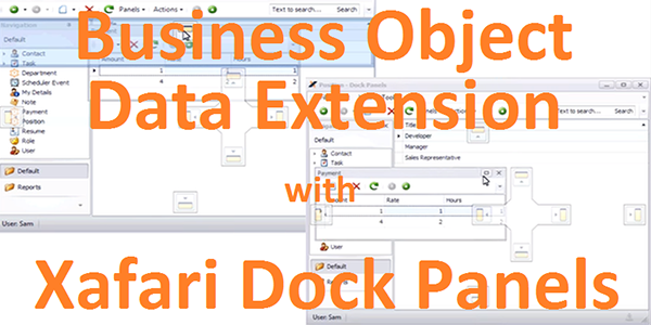 Business Objects Data Extension with Xafari Dock Panels