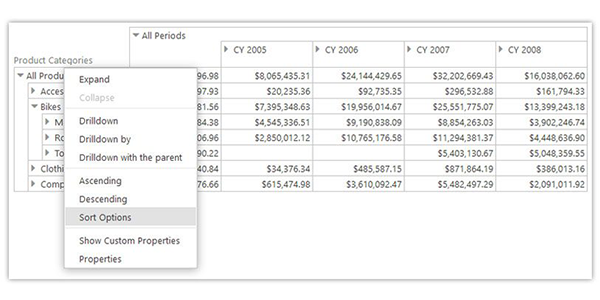 Ranet for HTML 5.7.150. Sorting Data in the Pivot Table