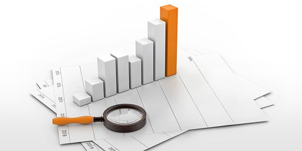 Ad-hoc Reporting Solutions in Data Analysis