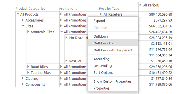 Pivot Table Data Analysis Commands in Ranet OLAP