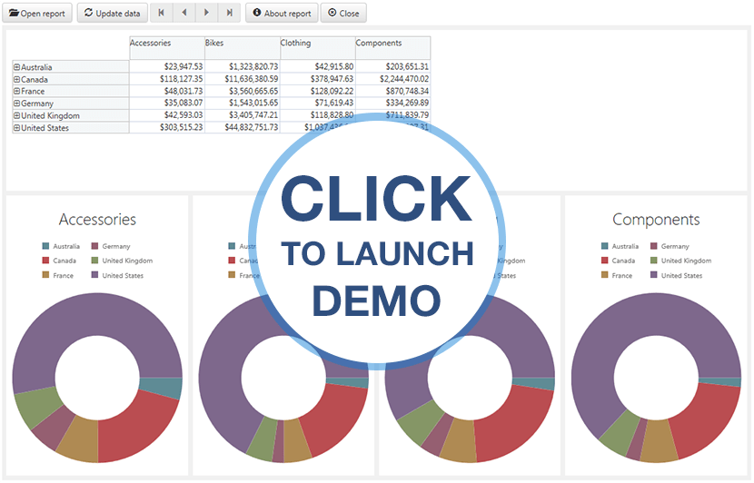 Ranet Analytics Online Demo HTML5/JavaScript version