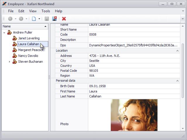 Xafari Vertical Grid Property Editor